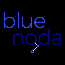 blue noda digital marketing